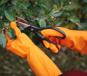 FE405 Industrial Latex Gloves